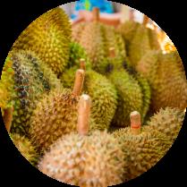 puesto de durians empresa